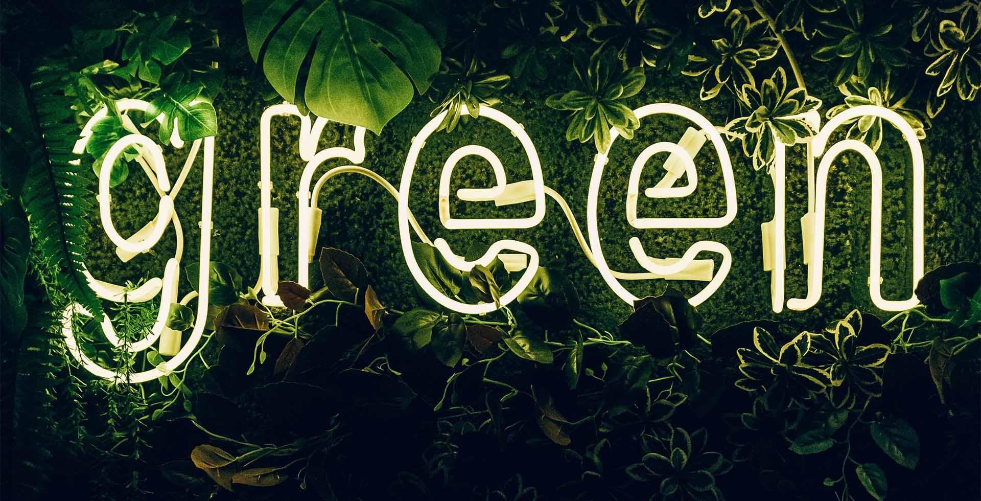 La differenza tra eco e bio, vegan e clean, naturale e cruelty free. Nel glossario della cosmetica green